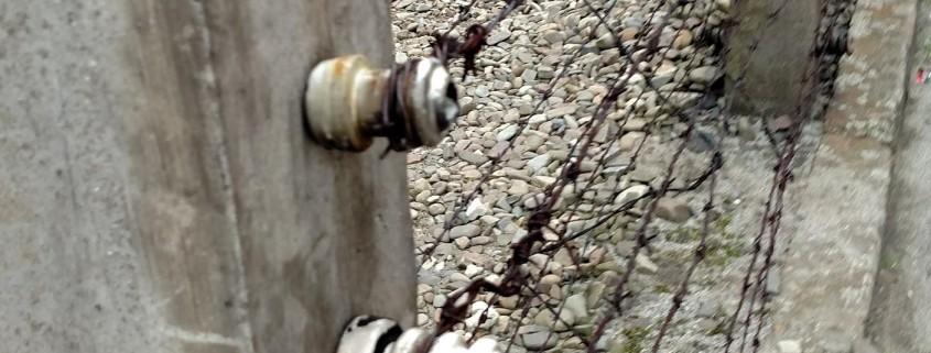 Pictured above is the barbwire fence that surrounds the camps. Captured by Jacquelyn Myers