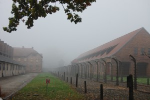 Auschwitz in the fog.