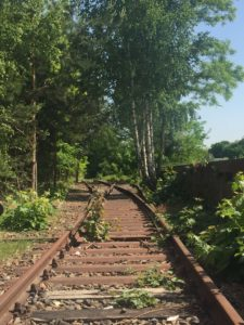 Image A- Grunewald Station: Track 17.