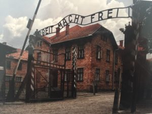 Auschwitz I- Photo taken of a postcard purchased at gift shop