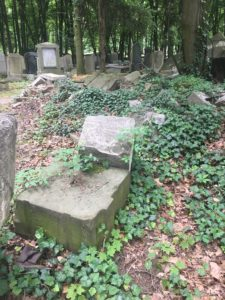 """The conditions found throughout the New Jewish Cemetery"""