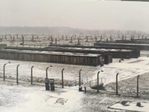Auschwitz II-Birkenau – Photo taken of a postcard purchased at gift shop