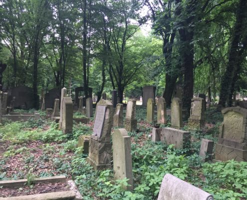 Field 6: The condition the gravestones in our field are in