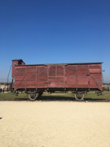 Birkenau Train Car