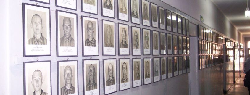 Bloc 11 in Auschwitz shows the images a photographer took of prisoners upon their arrival at the camp these images were used to identify prisoners if they were to escape.