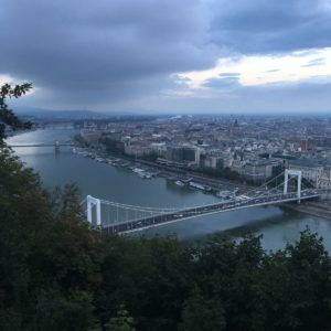 A view of Pest through the trees near the summit of Gellert Hill. The neogothic Hungarian Parliament is visible in the background.