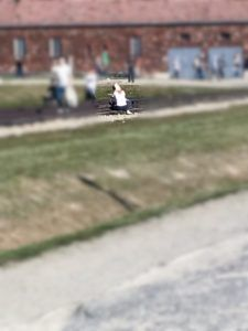 A Visitor Takes a Selfie While Sitting on the Railroad Tracks at Auschwitz-Birkenau