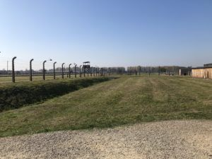 Part of the fencing of Birkenau concentration camp and a few structures, separated by vast amounts of space.