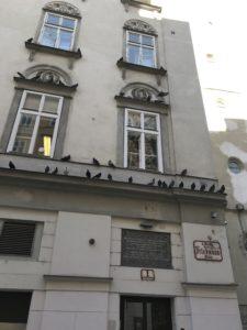 The synogogue at 1 Friedmanplatz in Vienna