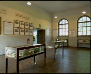 Inside of the Chevra Lomdei Mishnayot Synagogue, open-source photo provided by the Auschwitz Jewish Center