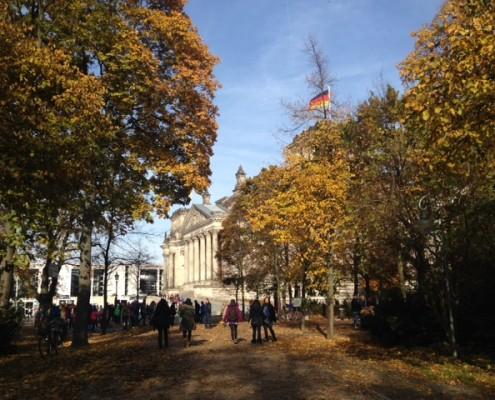 Trees in Berlin