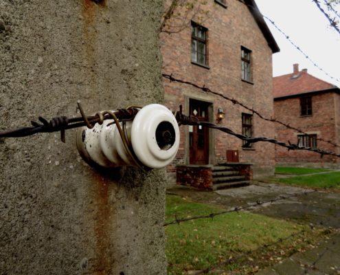 Cynthia_UL2_Auschwitz Building